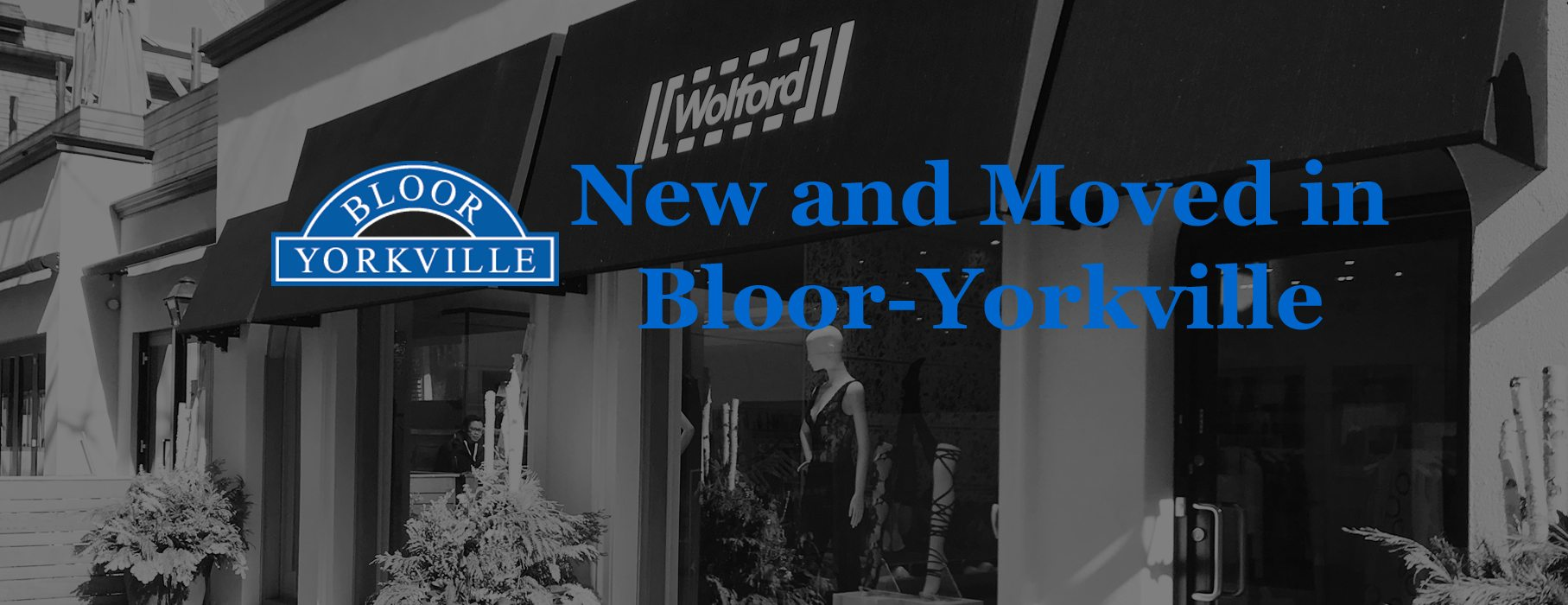 New and Moved in Bloor-Yorkville