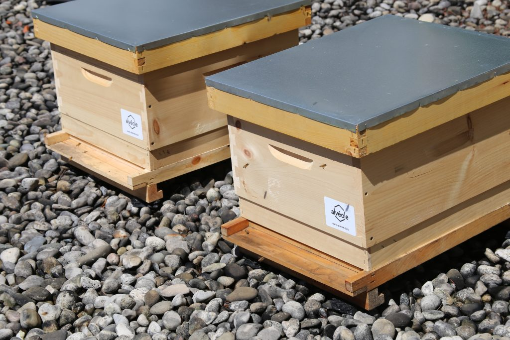 Photo of the completed bee hives