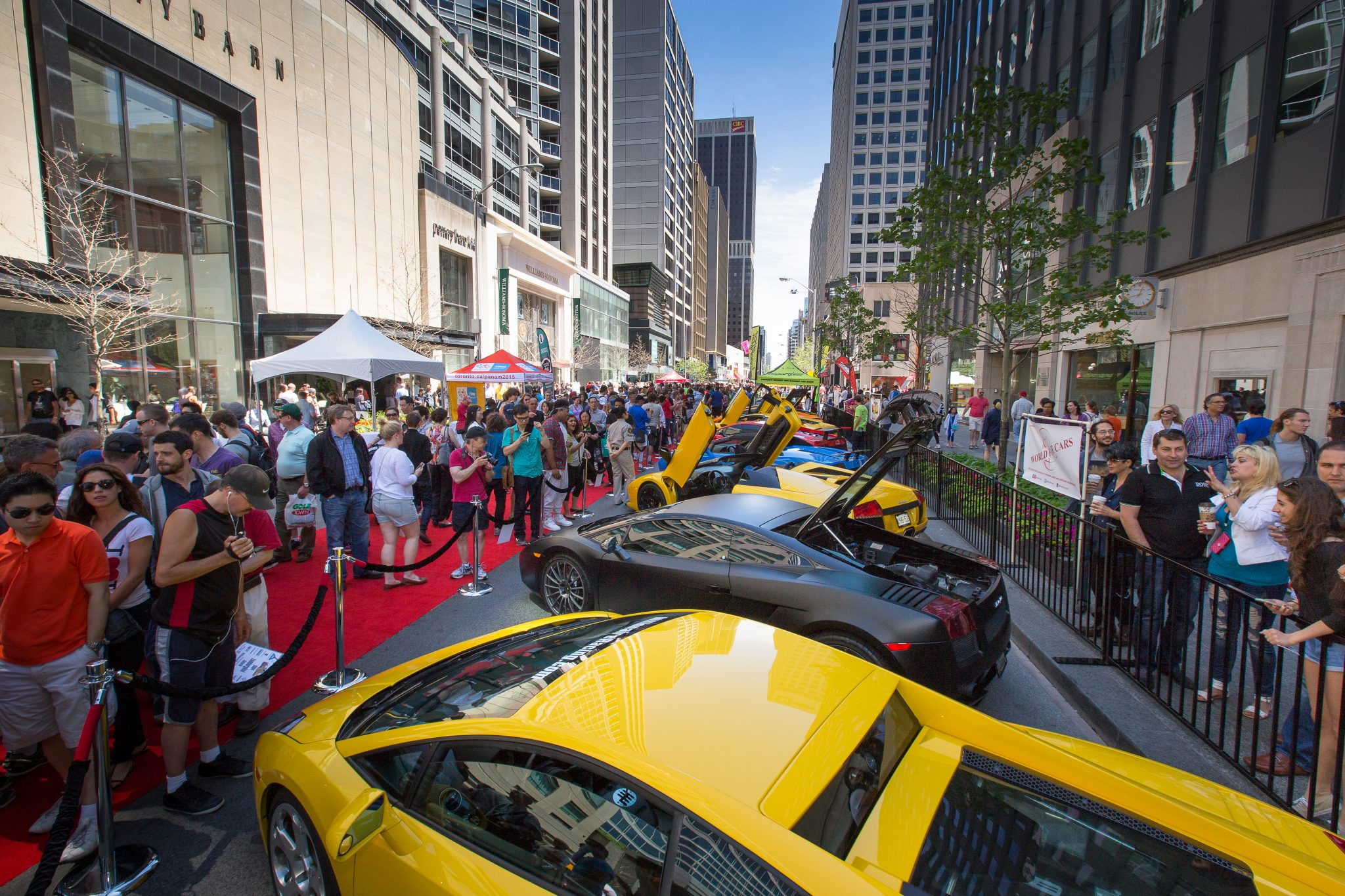 6th Annual Yorkville Exotic Car Show