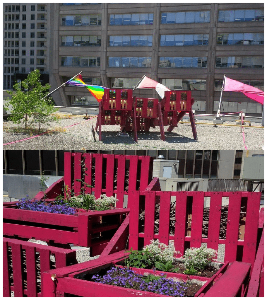 Photo collage of the pollinator garden for toronto bees on top of Holt Renfrew on Bloor Street. On top is a photo from behind, showing the flags on front of the Holt's building and the Manulife Centre across the road. At the bottom is a close-up of the plants in the garden.