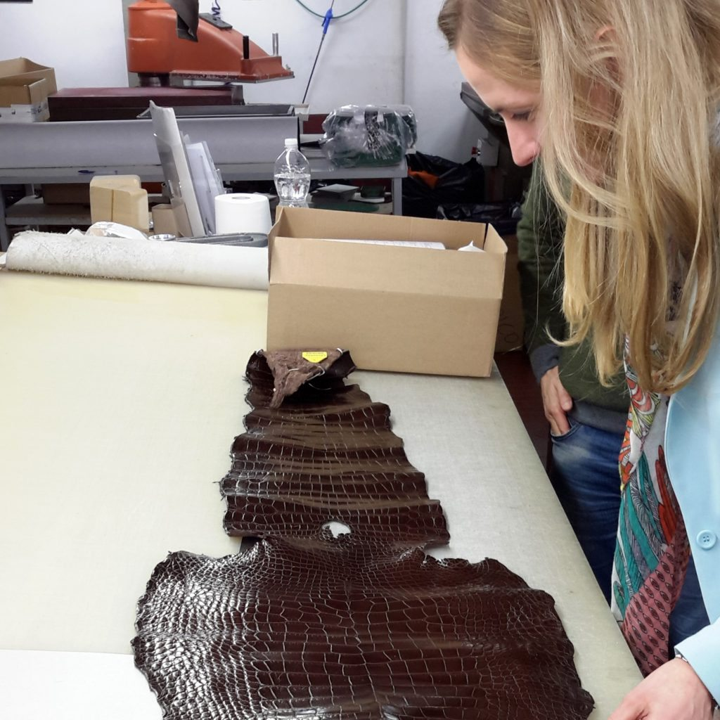 Image of Alexandra Warwick inspecting an alligator skin